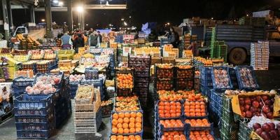 ایجاد میدان میوه و ترهبار در شهر صدرا