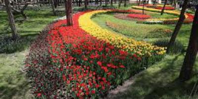 لزوم احداث بوستان در «مامونیه» شهرستان زرندیه