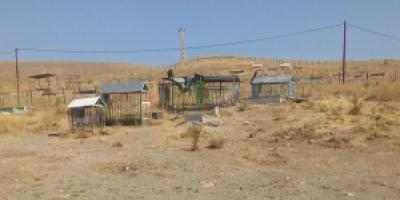 تقاضای ساماندهی مزار شهدای آلهاشم شهر خلخال