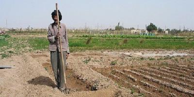 بازدید امام جمعه شهرستان طارم از مشکلات آب کشاورزی روستای مورستانه
