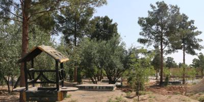 بیتوجهی به خشک شدن درختان باقوشخانه اصفهان