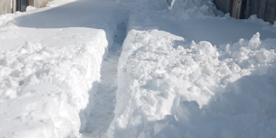 برای نان و قطعی آبوبرق رودسر فورا اقدام کنید؛ مسئولان در برف ماندهاند؟
