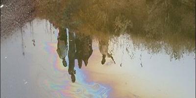 لزوم پیگیری رفع آلودگی نفتی آب سرخون