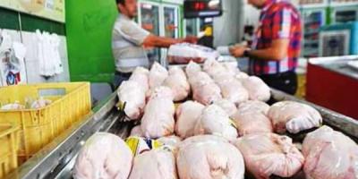 مرغ فروشان رشتی: دلالان عامل اصلی افزایش قیمت مرغ هستند
