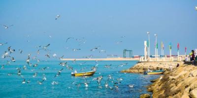 لزوم معرفی جاذبههای گردشگری بوشهر