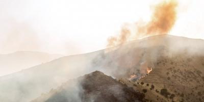 آتشسوزی کوههای بخش ارم در دهرود دشتستان