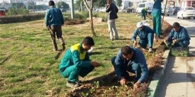عدم به کارگیری کارگران فصلی فضای سبز اردبیل به علت درخواست مطالباتشان